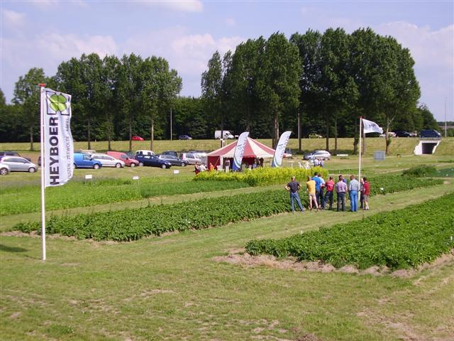 Gratis aardappelen, uien en wortelen bij Heyboer BV
