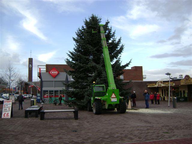 Kerstbomen gezocht