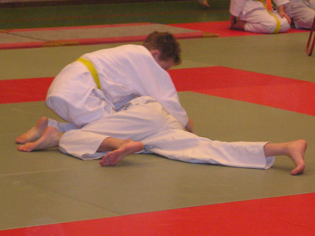 Medailles voor Biddinghuizer judoka's