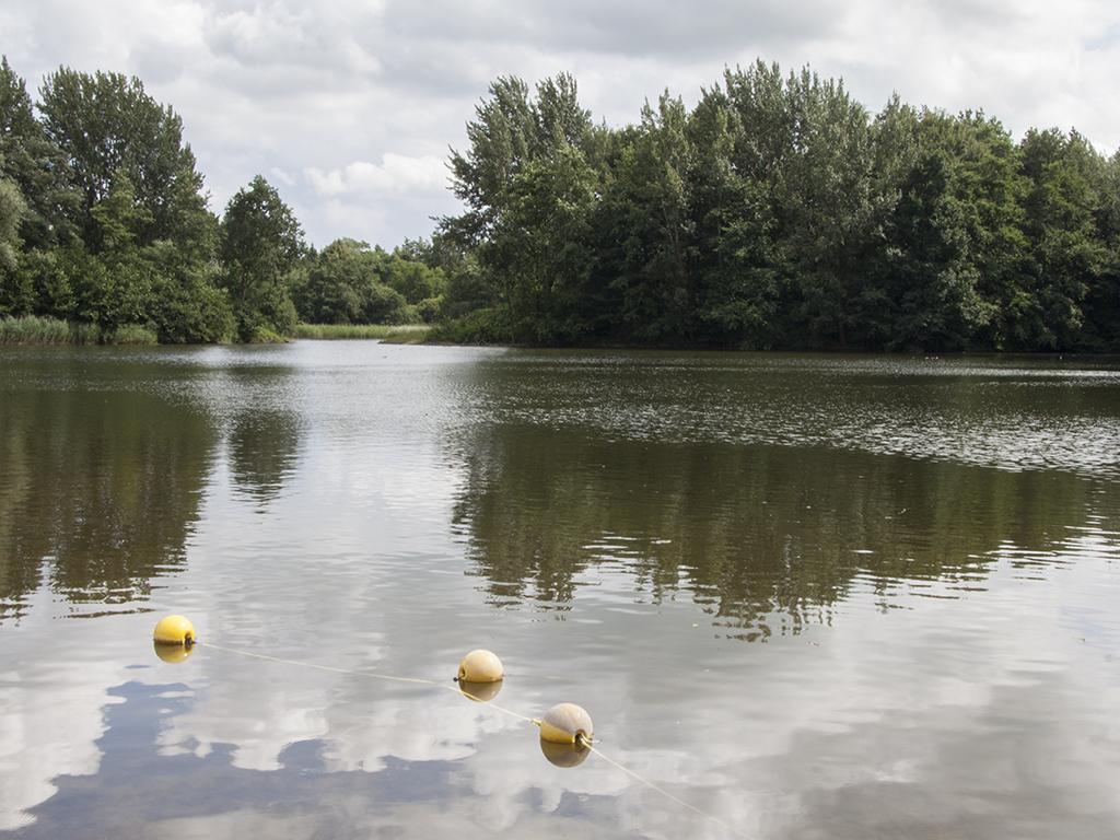 Zwemwater Biddinghuizen nog altijd veilig