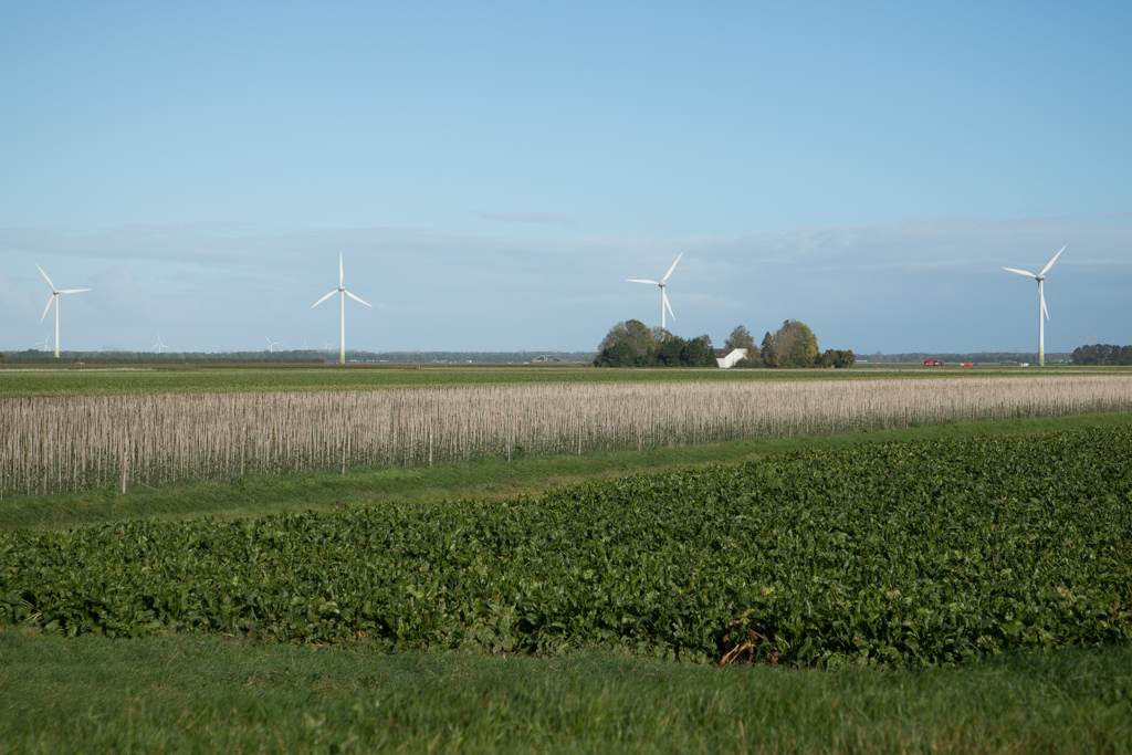 Agenda informatieavond windmolens rond Biddinghuizen