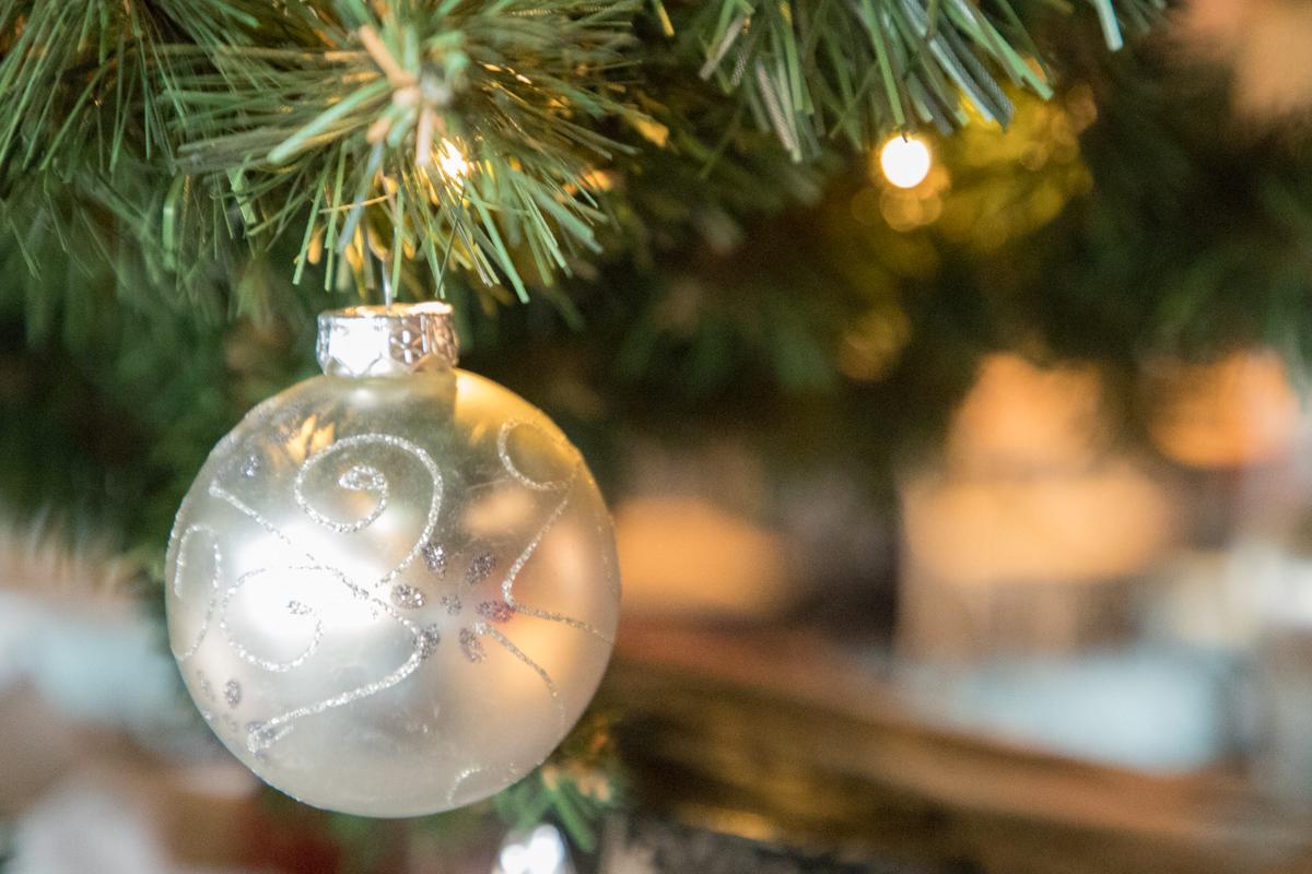 De IJsvogel steunt inwoners met kerstpakketten op Winterfair