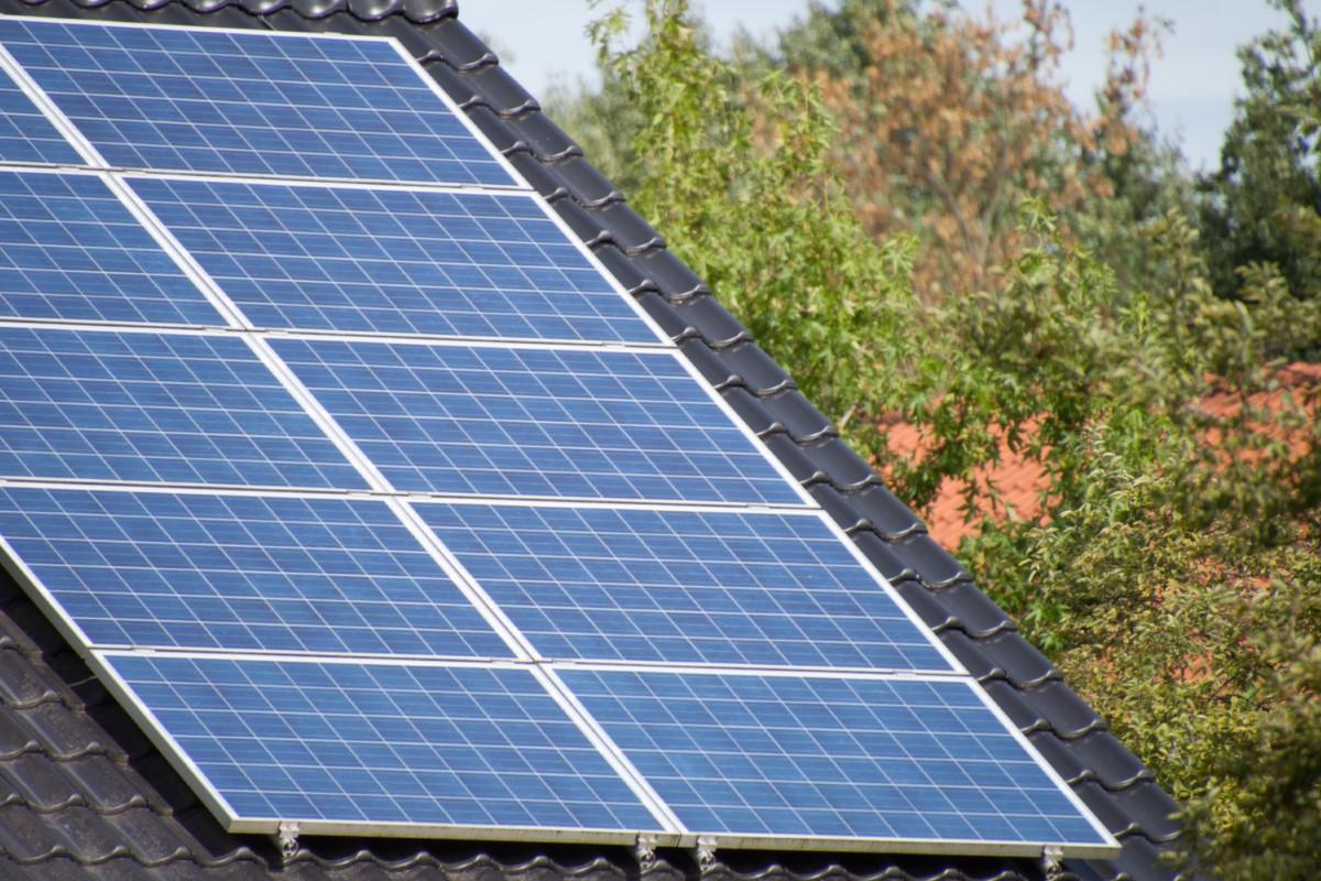 Aanleg zonnepark Dorhout Mees stap dichterbij