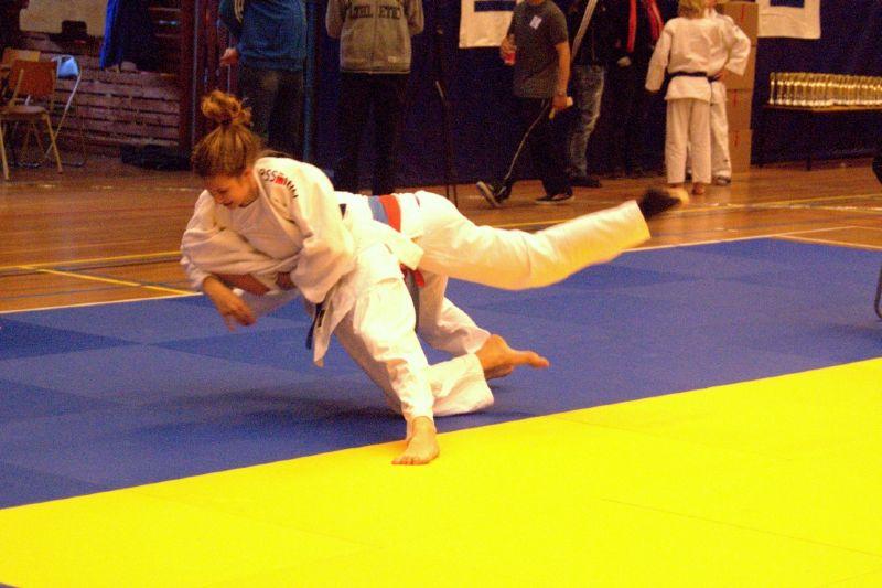 Verslag Dedemsvaart BAS judo