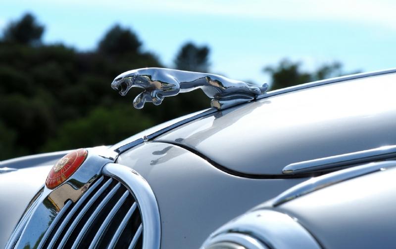 Jaguar Daimler club doet Biddinghuizen aan